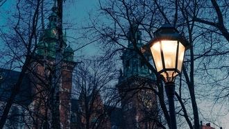 twilight, trees, branches, oland, dusk, church, lamp, rakw, cathedral