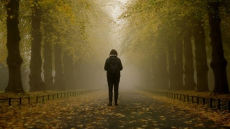girl, misty, trees, park, autumn, leaves, fog, branches, path, foggy, mist