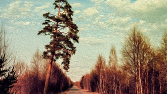 road, forest, clouds, canvas, oil, painting