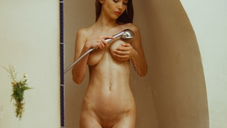 women, nude, shower, the gap, boobs, shaved pubic hair, wet body, water drops, brunette, hands on boobs