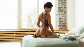women, short hair, ass, kneeling, boobs, nipples, tattoo, in bed, pillow, brunette, window