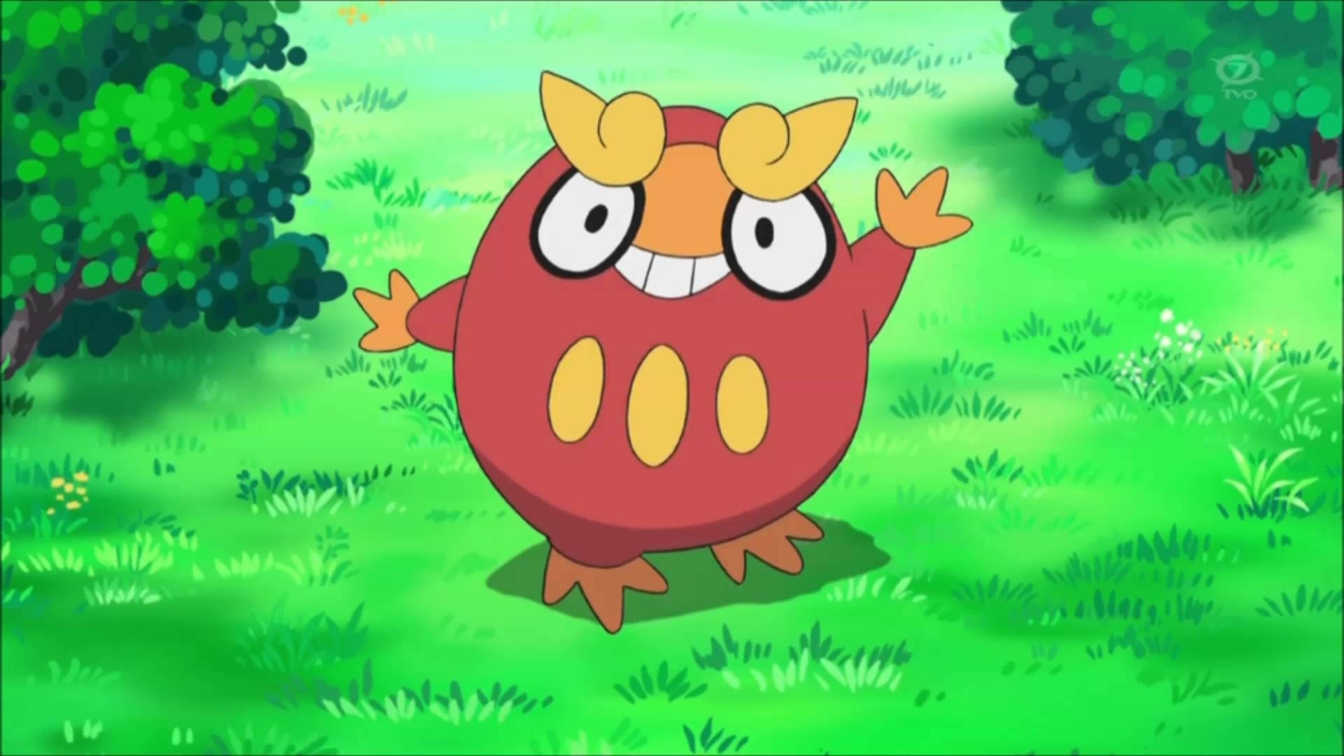 darumaka, pokemon