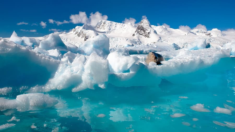 Океан север антарктида природа льды