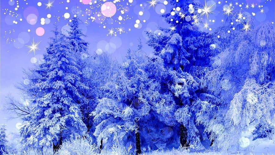 Пейзаж синий природа деревья зима