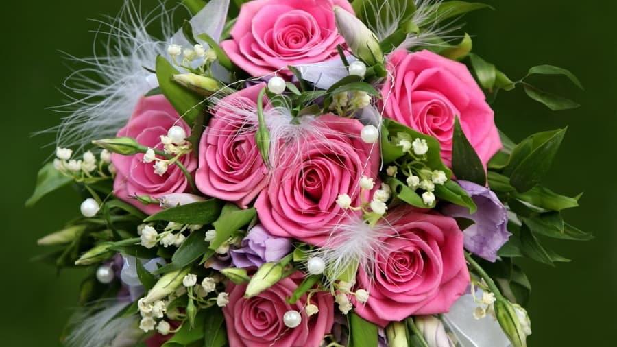 красивые картинки цветы природа: