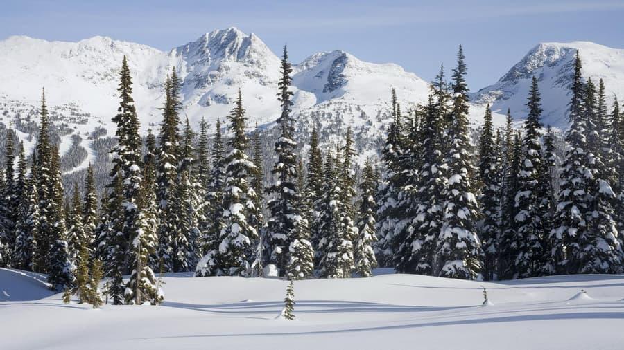 Зима картинки горы снег лес пейзаж