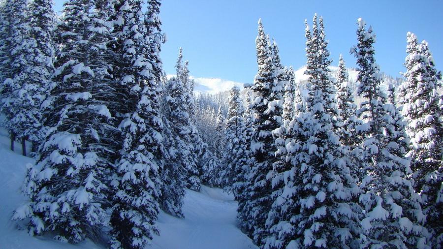 Природа пейзажи зима на рабочий стол