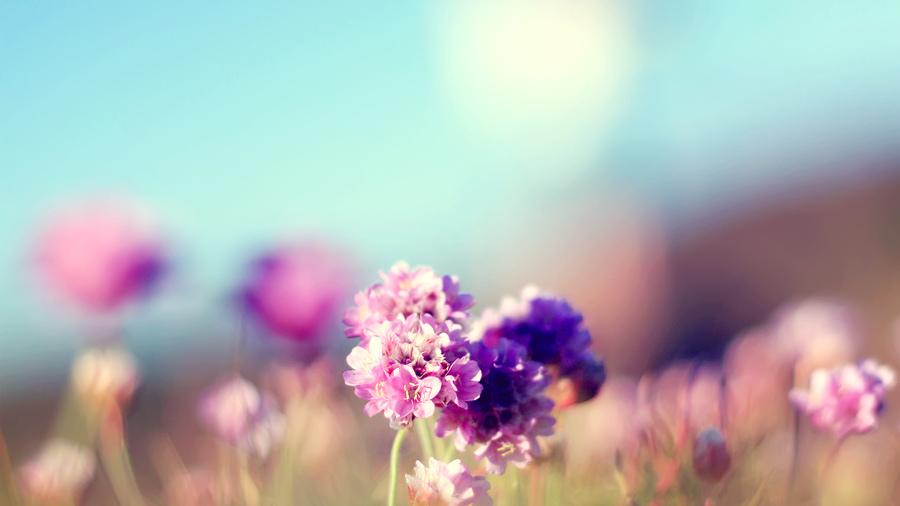 Белый топ с цветком