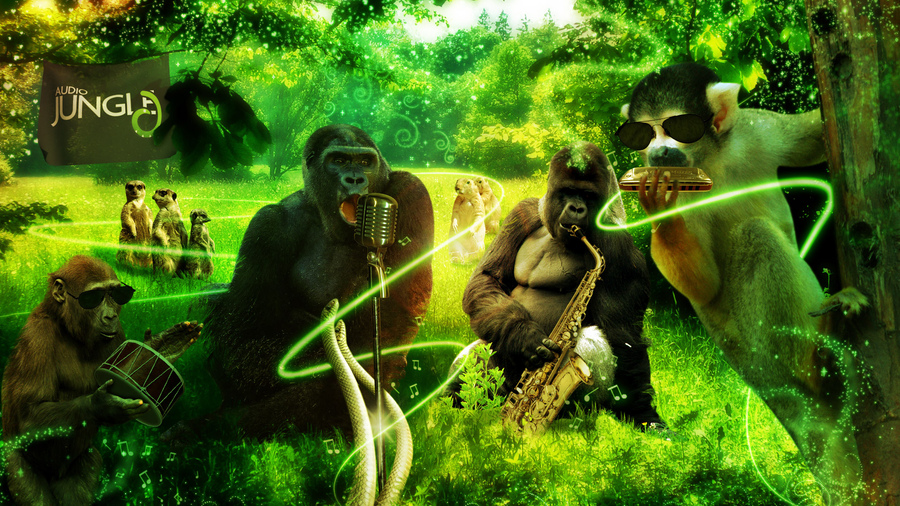 фото африки джунгли