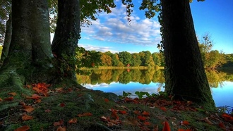 lake, natures colors, trees, sky