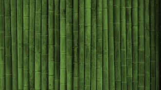 green style, texture wallpapers, ����, ��������, ������