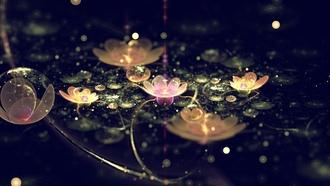 Абстракция огоньки лепестки цветок