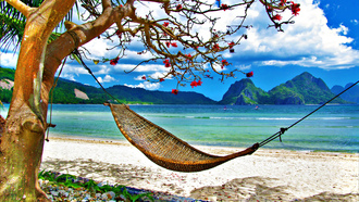 tropical, nature, clouds, hammock, summer, Exotic, landscape, sky, grass, beach, ocean, sea