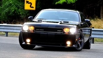 cats, ����� ����������, �����, Dodge Challenger SRT, muscle cars