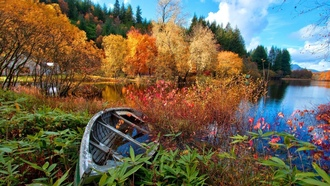 �������, �����, �����, ���, boats, broken, ���������, forest, lakes, nature