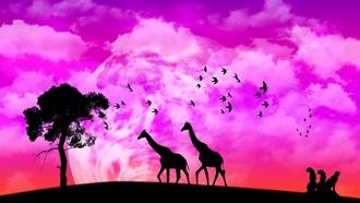 Жираф обои для рабочего стола