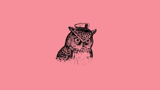 капитан филин, art print, captain owl, минимализм, Alejandro giraldo