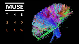 colors, wires, обложка, the 2nd law, muse, bundle, brain