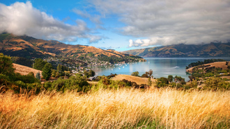 akaroa, new zealand, aotearoa, south island, новая зеландия
