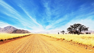 tree, ������, �������, environment, ��������, �������, wilderness, savanna, ������, sunny, ����, road scenery, dusty, landscape, africa, ������