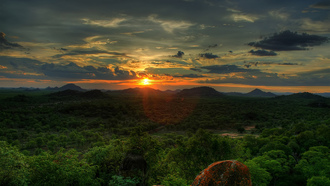 trees, sky, zimbabwe, закат, лес, the sun, sunset, african sunset