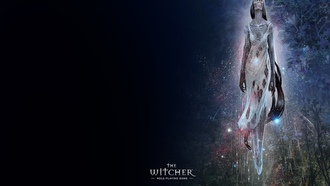 �����������, ���, the witcher