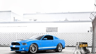cars, ford, shelby 500, auto