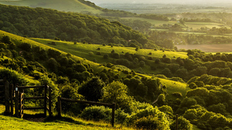 �������� �������, ������, england, great britain, west sussex, pyecombe