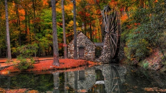 nature, view, mill, forest, water, alley, autumn, hdr, park, trees, river, walk, leaves, water mill