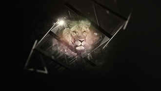 lion, background, black