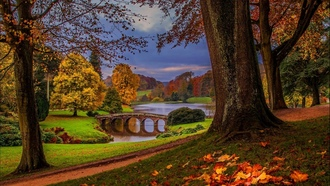 sky, river, forest, walk, trees, alley, park, leaves, view, hdr, nature, water, autumn, fall