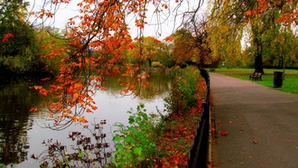 trees, bench, nature, alley, water, view, park, forest, river, sky, fall, leaves, walk, hdr, autumn