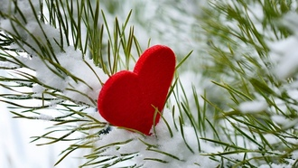 ������, heart, i love you, ������, ����, snow, ����, love, ������, winter