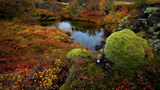 ���, national park thingvellir, �������, �����, �����, ��������