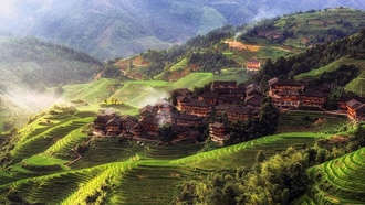 china, asia, rice paddy, morning, house, ����, ��������� ����, �������, ������
