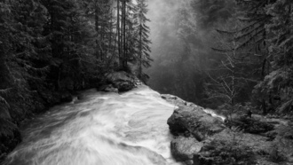 nature, landscape, waterfall, forest, mist, morning, sunlight, monochrome