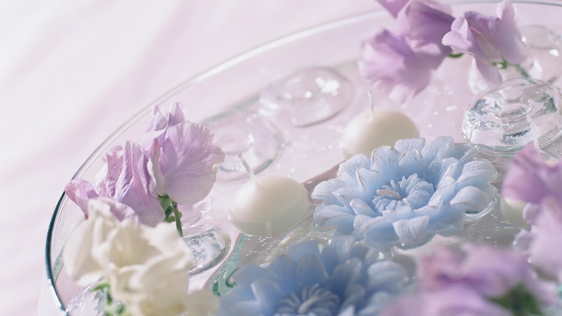 Цветы ю вода синие фиолетовые обои