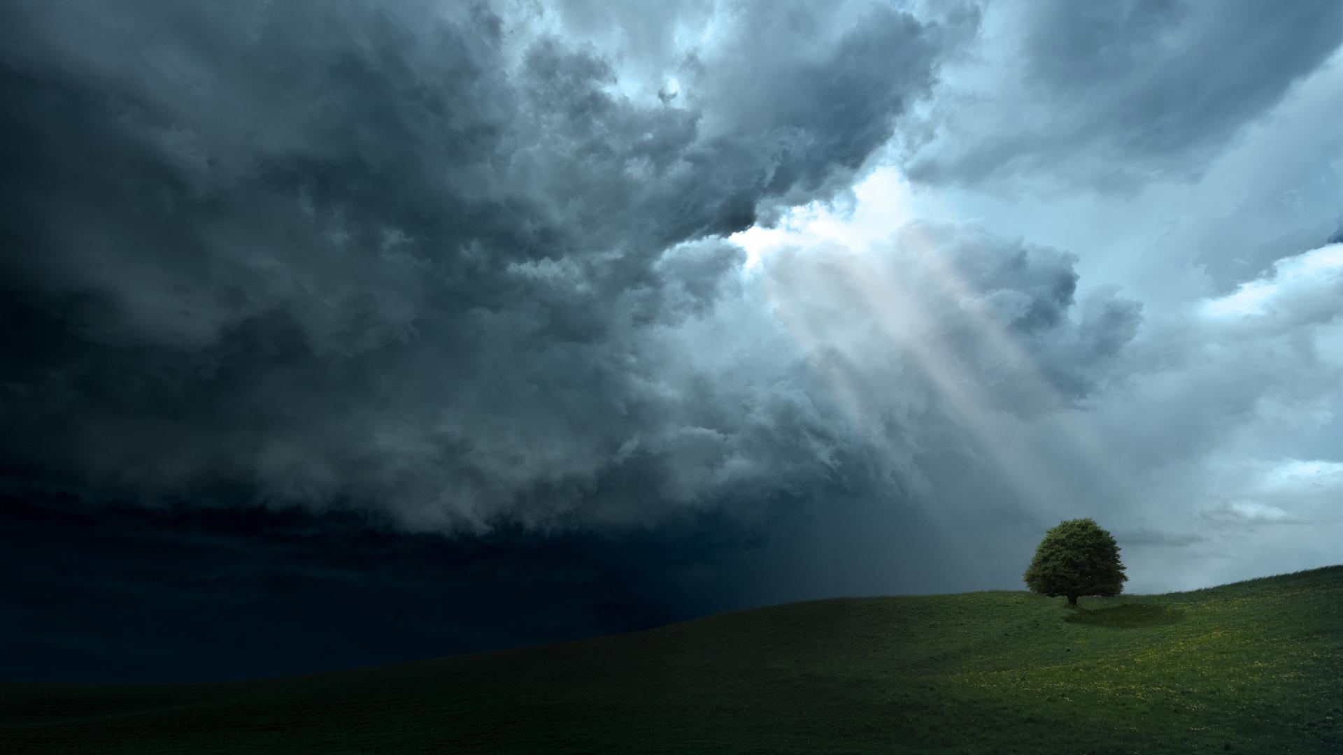 лучи, свет, дерево, холмы, пейзажи, фото, обои, красота, деревья, Облака, небо