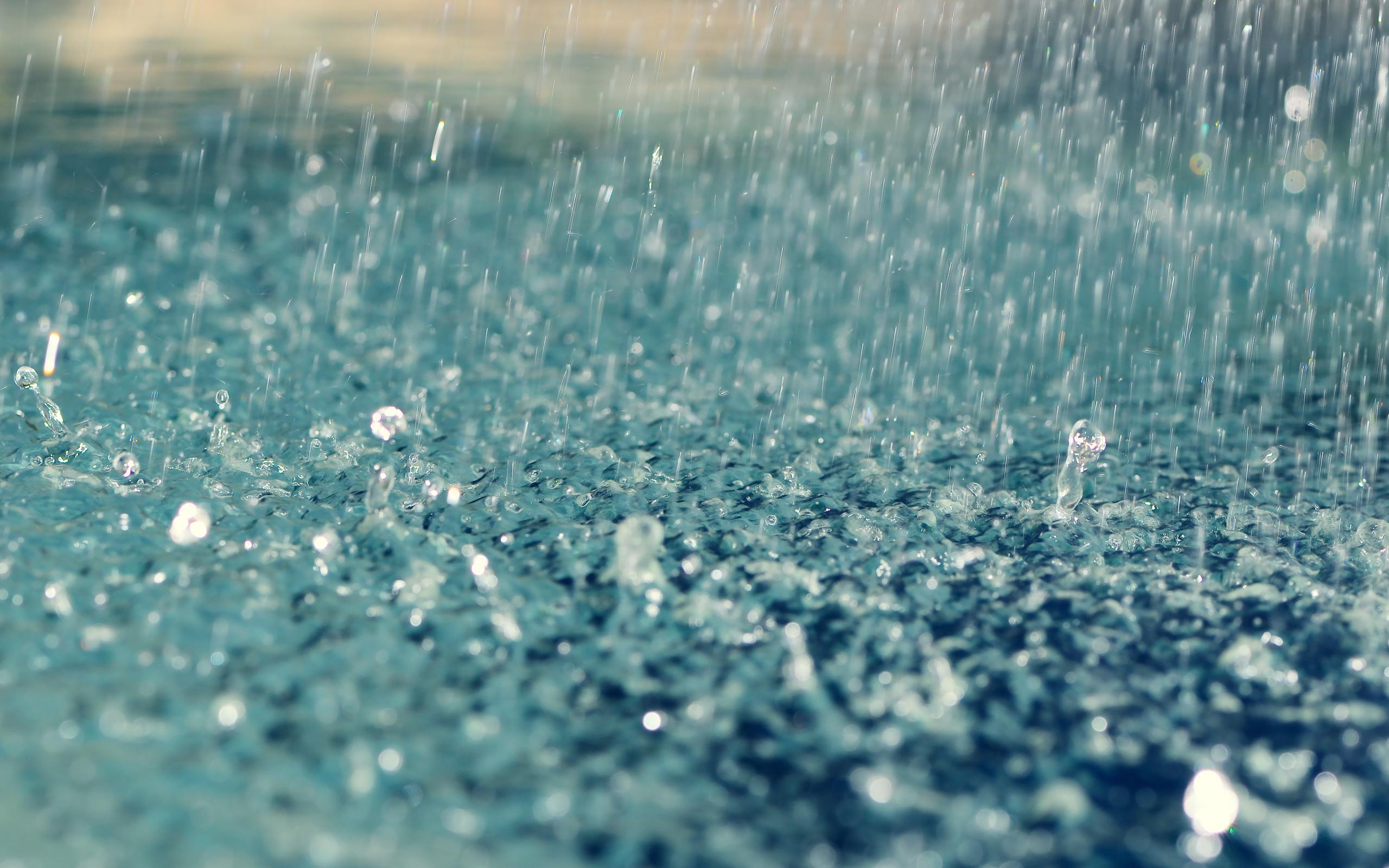 Фото золотой дощ 10 фотография