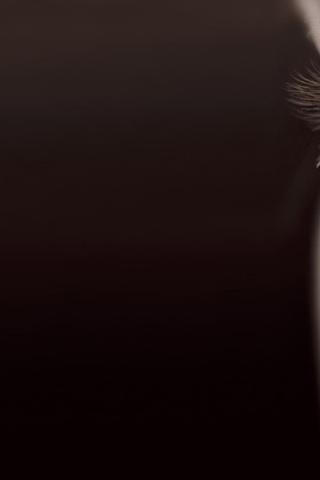 глаз, ресницы, Лицо