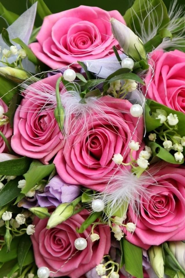 Розы признание красивые листья