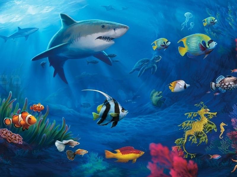 Акулы кораллы черепаха подводный