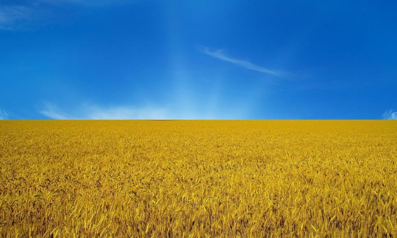небо, flag, Украина, флаг