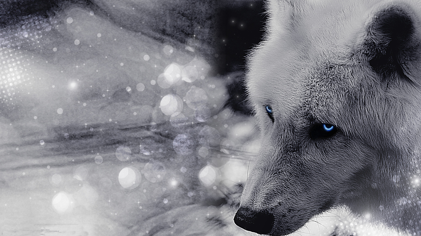 фотообои на рабочий стол волки:: pictures11.ru/fotooboi-na-rabochij-stol-volki.html