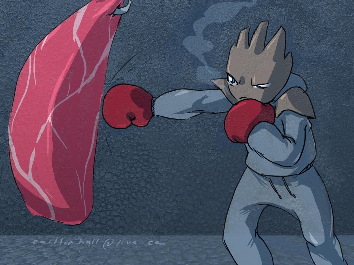 hitmonchan, pokemon