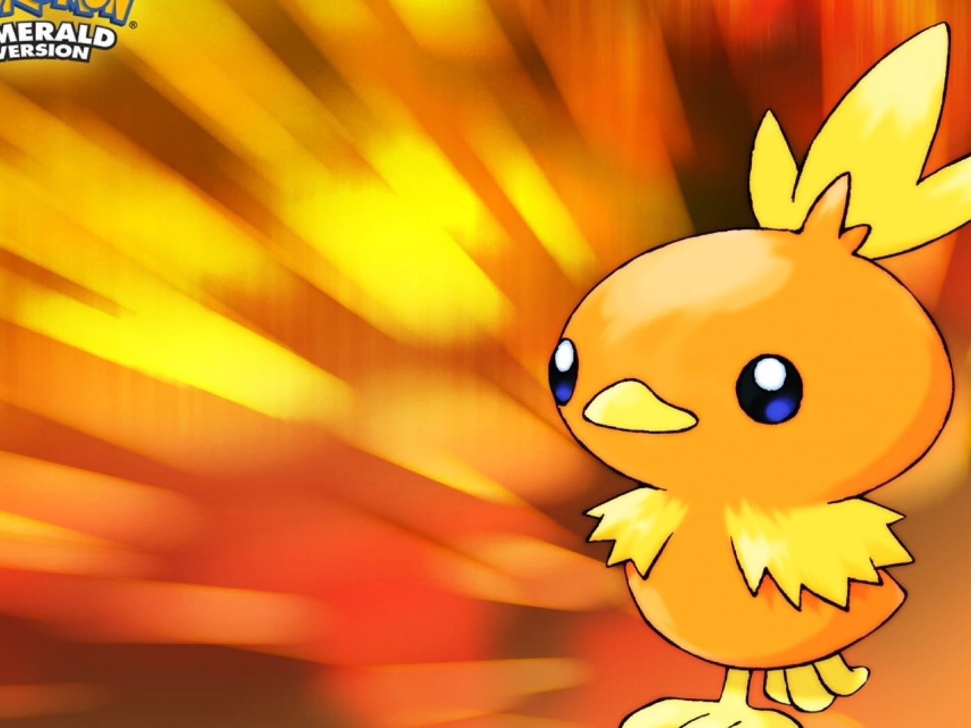 pokemon, torchic