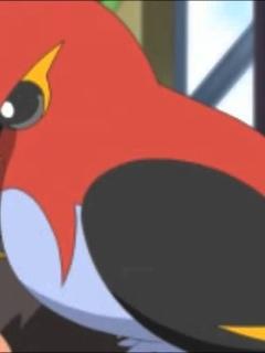 pokemon, fletchinder