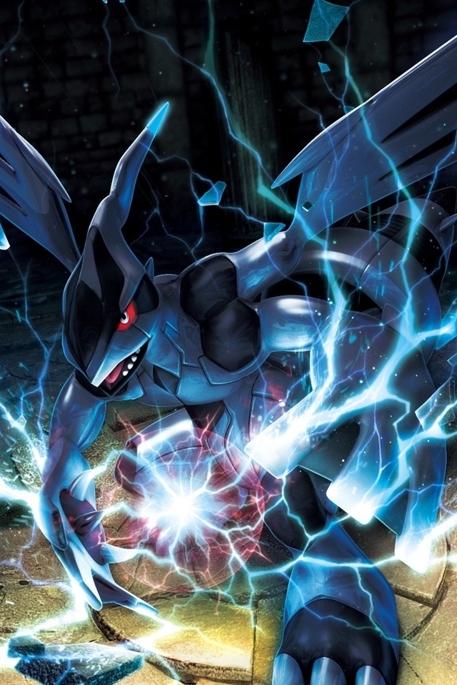 pokemon, zekrom