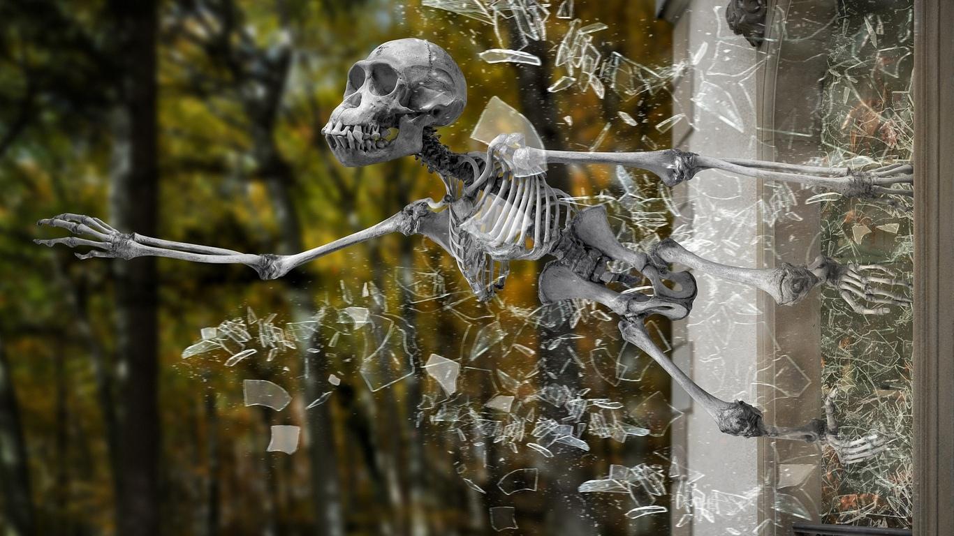 скелет, выпрыгивает, из окна, юмор