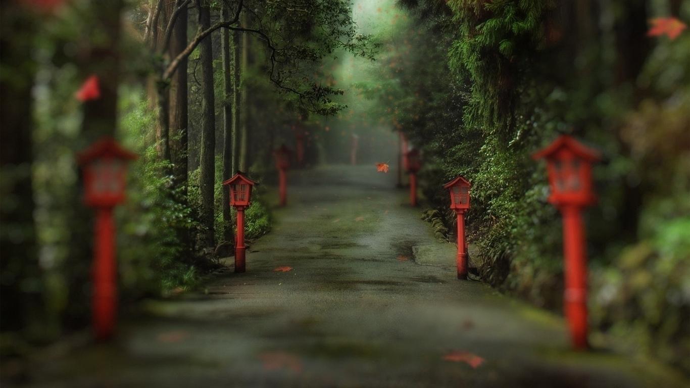 аллея, фонари, природа, лес